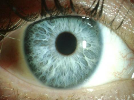 eye_closeup